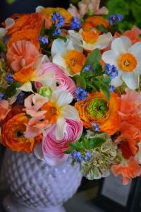 Bouquet de narcisses, renoncules, pois de senteur, oeillets et myosotis