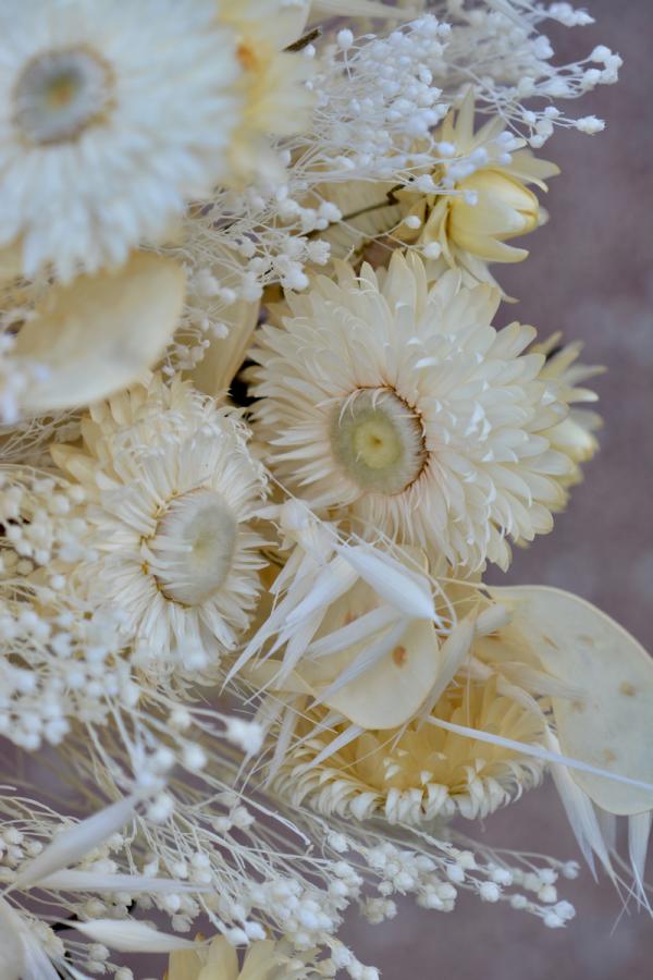 Bouquet de fleurs séchées blanches
