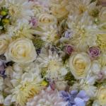 camaieu-rose-mauve